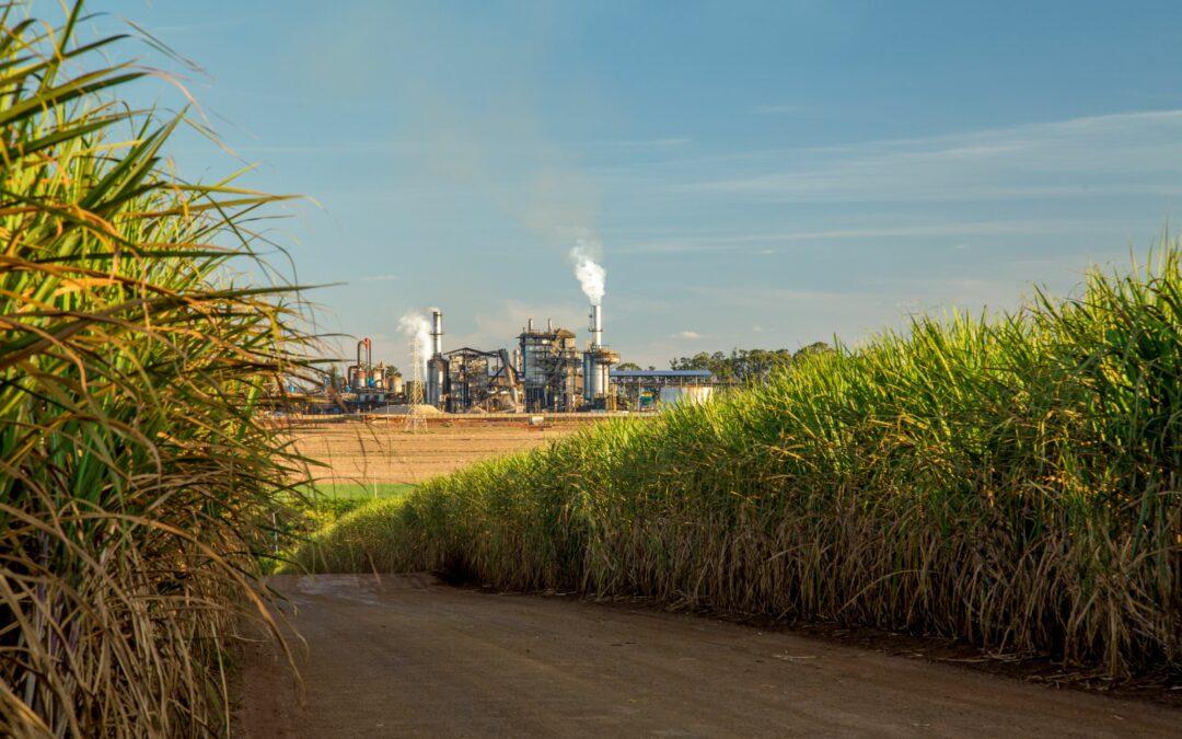 Projeto de Lei quer livre comércio de etanol